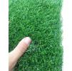 Зеленая трава ПЕЛЕГРИН 20