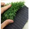 Зеленая трава ПЕЛЕГРИН 35