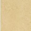 Керамический Гранит Italon Charme Amber(Италон Шарм Амбер) лоппатированная 60x60 см