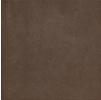 Керамический Гранит Italon Concept Brown(Италон Концепт Браун) 60х60 см