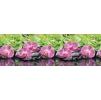 "Кухонный фартук ""Орхидеи эпифиты"" из АБС-пластика 3000*600*1,5мм"