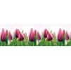 """Кухонный фартук """"Тюльпаны"""" из АБС-пластика 3000*600*1,5мм"""