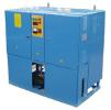 Электропарогенератор ЭПГ-275-5У