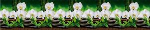 "Кухонный фартук ""Орхидеи Белые"" из АБС-пластика 3000*600*1,5мм"